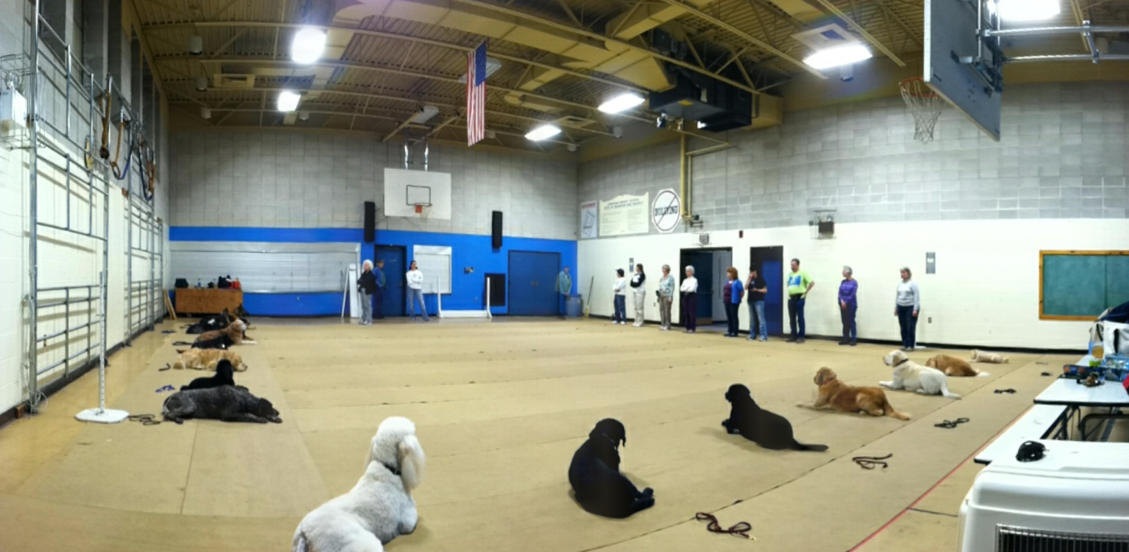 Stay In Class - Training Class Waltham HS - Charles River Dog Training Club